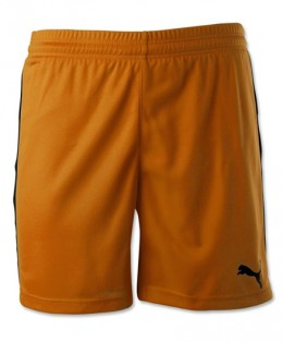 Puma-Pitch-Shorts-Orange
