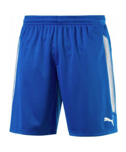 Puma Striker Short
