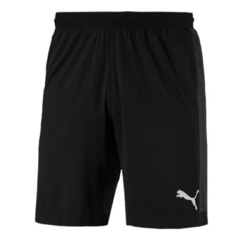 Puma Final Evoknit GK Shorts